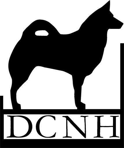 Islandhunde im DCNH e.V.